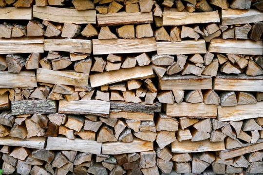 best wood for wood fired pizza oven